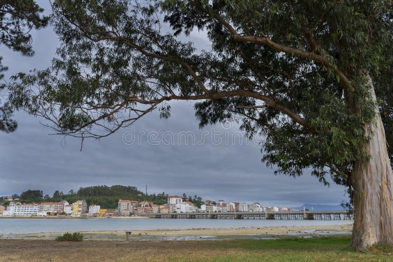 Isola di Toja della La fotografie stock