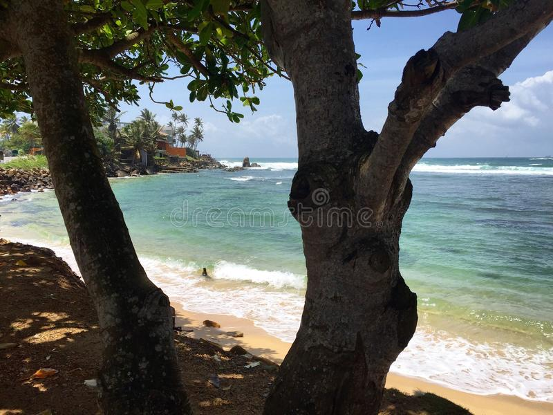 Isola di Tristan immagine stock libera da diritti
