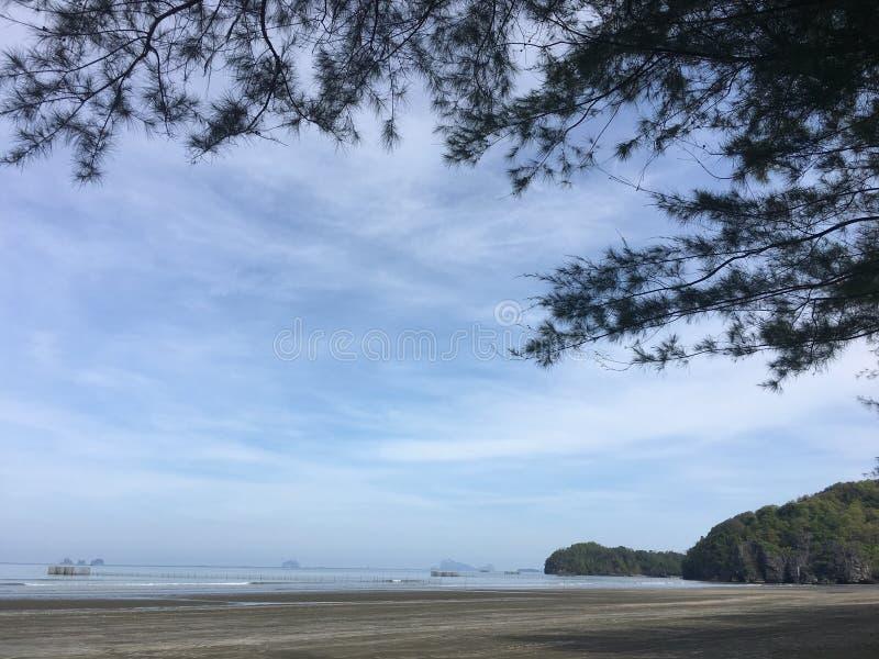 Isola di Tristan immagini stock libere da diritti