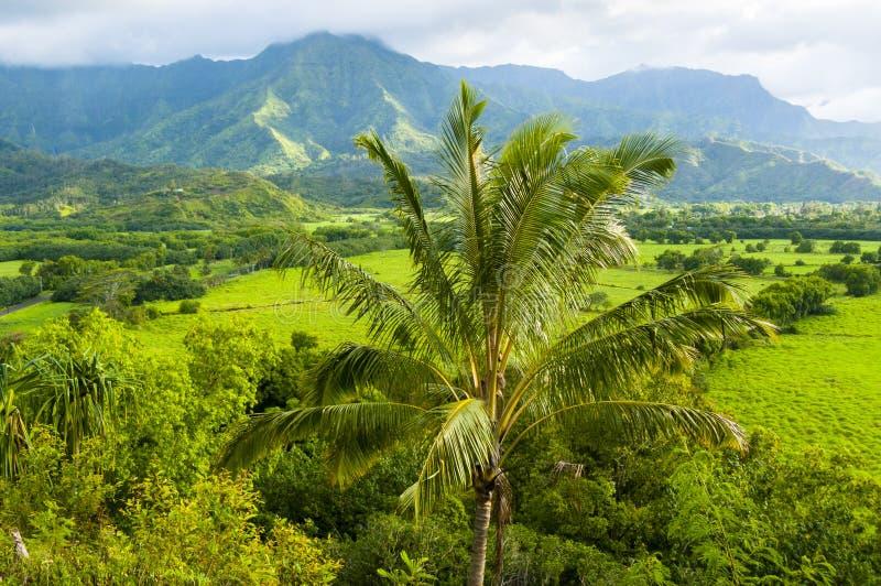 Isola Hawai Stati Uniti di kawaii di panorama fotografie stock