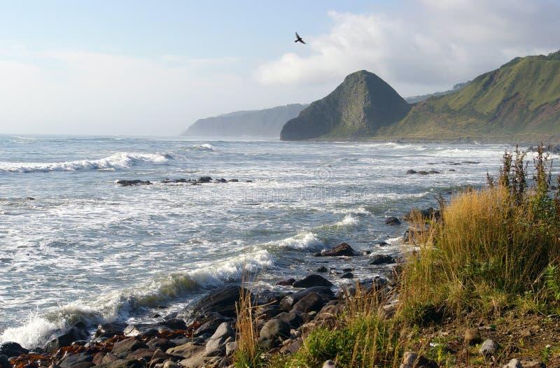 Isola Kunashir. fotografia stock libera da diritti