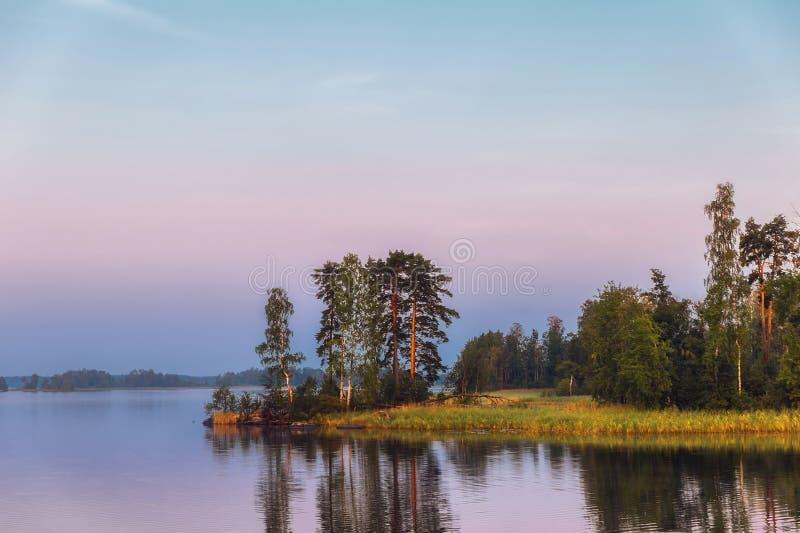 Isola luminosa su un lago con i pini alla luce di mattina fotografie stock
