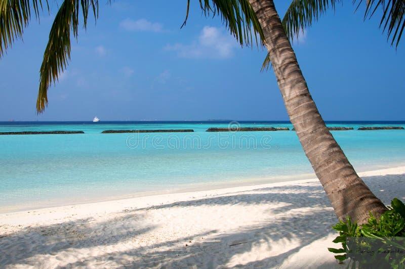 Isola maldives di Kurumba fotografie stock