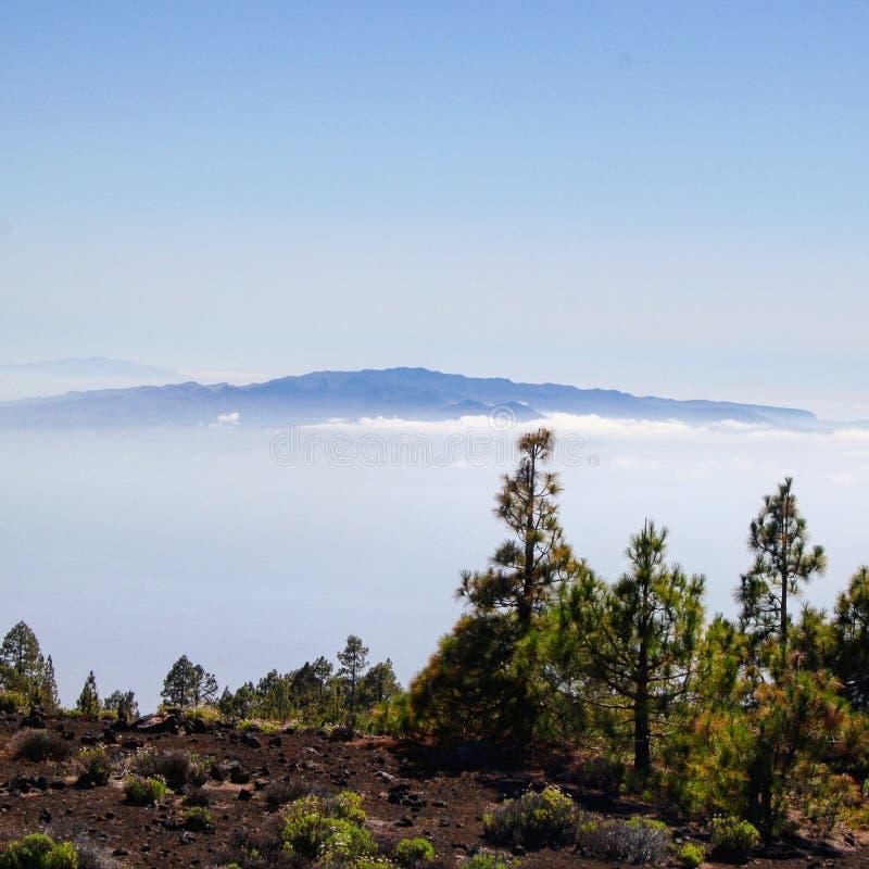 Isola Tenerife fotografie stock libere da diritti