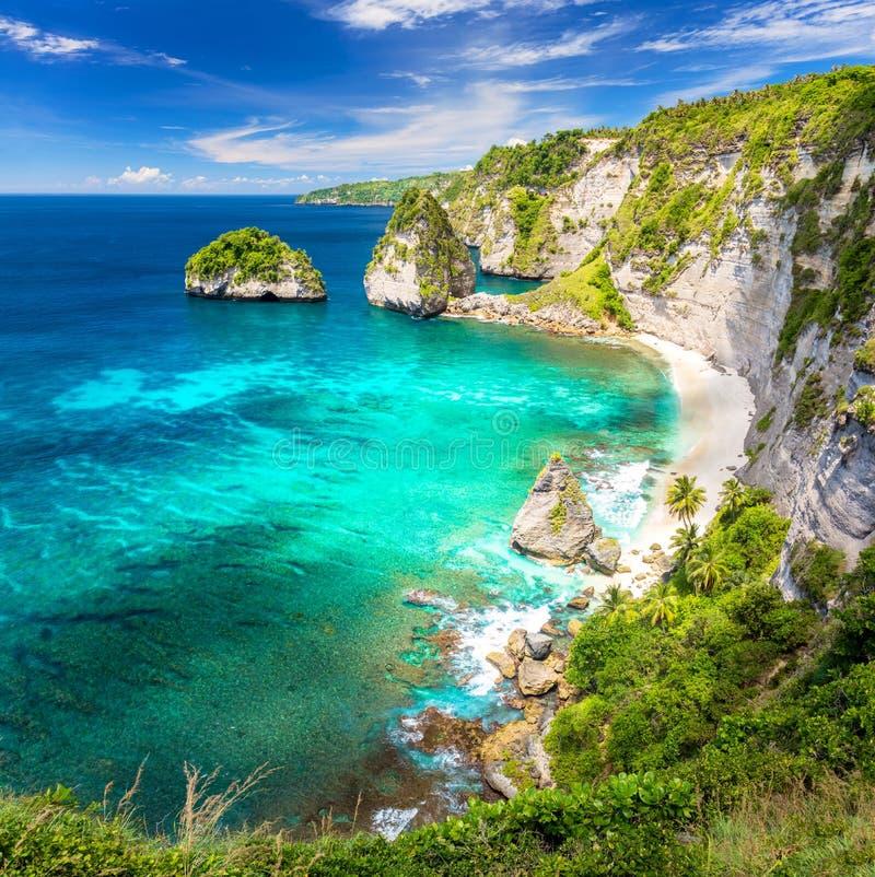 Isola tropicale stupefacente con la spiaggia sabbiosa, le palme, scogliera e fotografie stock libere da diritti