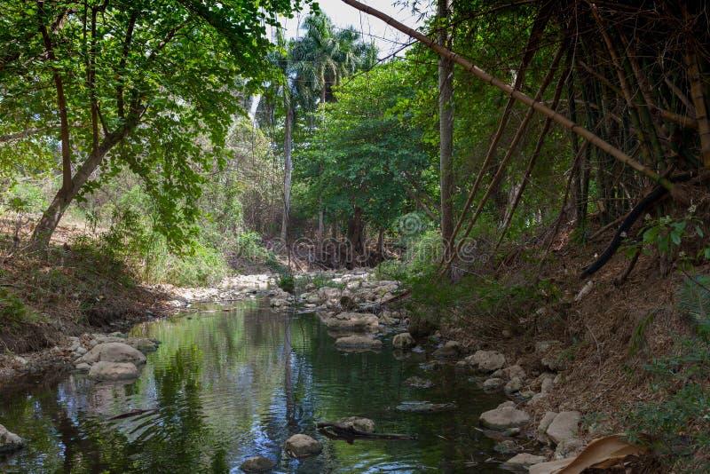 Isola tropicale viaggio fotografie stock