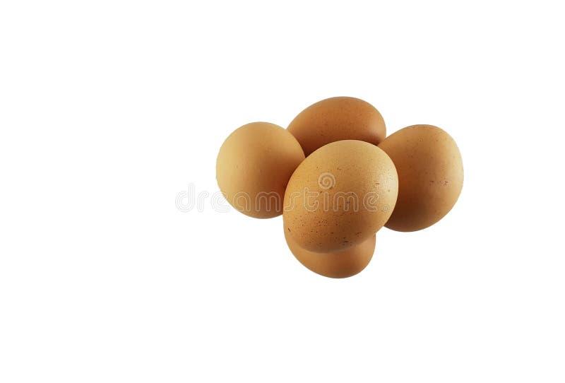 Isolado da opinião superior da galinha dos ovos no fundo branco imagens de stock
