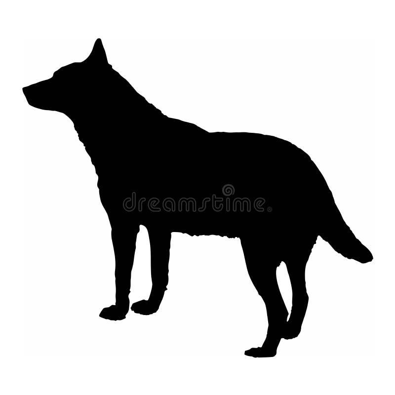 Isolado da silhueta do preto do lobo do cão na ilustração branca do vetor do fundo ilustração royalty free