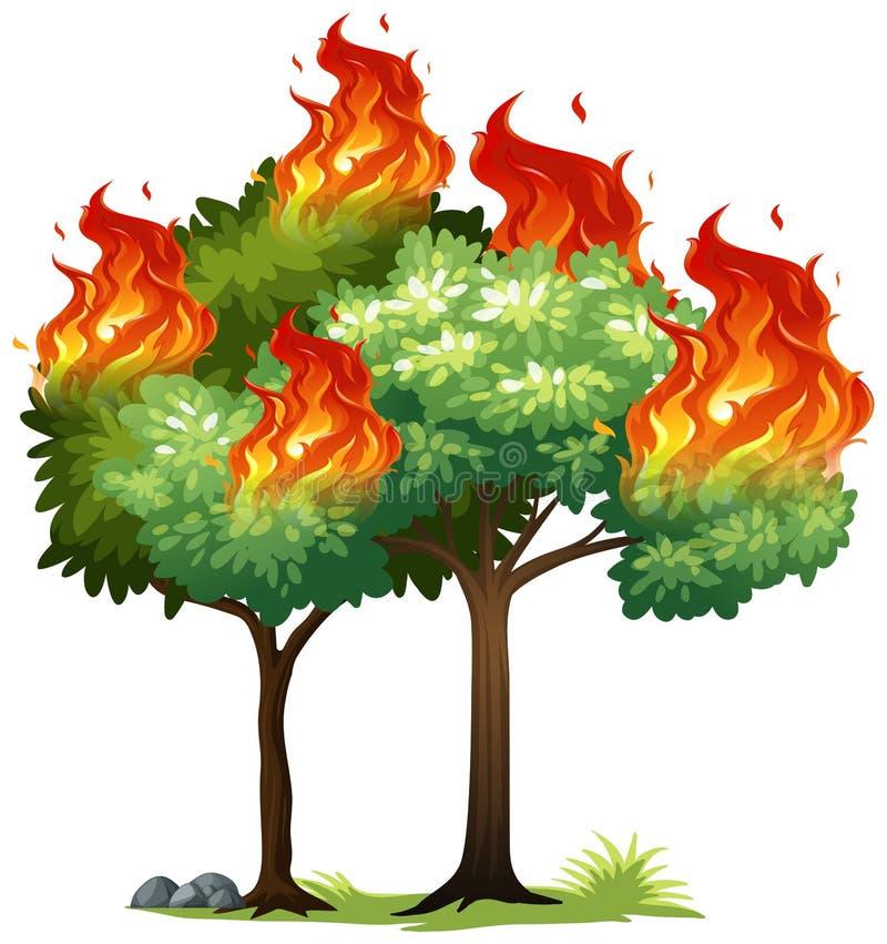 Isolared ogień na drzewie ilustracji