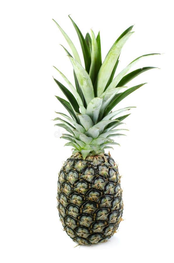 Isolat d'ananas sur le fond blanc photo libre de droits