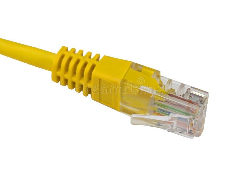 Isolat jaune de fil de connecteur de réseau sur le blanc image libre de droits