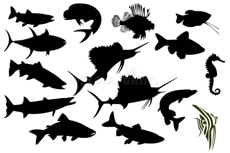 Isolat réglé par poissons illustration de vecteur