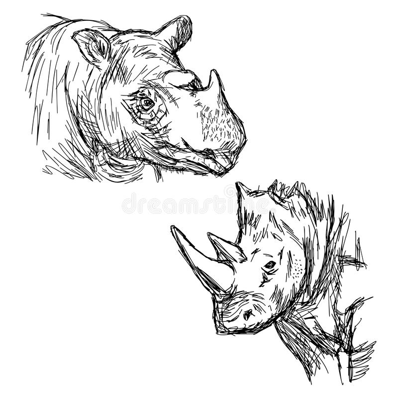 Isolat tiré par la main de rhinocéros de plan rapproché de griffonnage de vecteur d'illustration illustration libre de droits