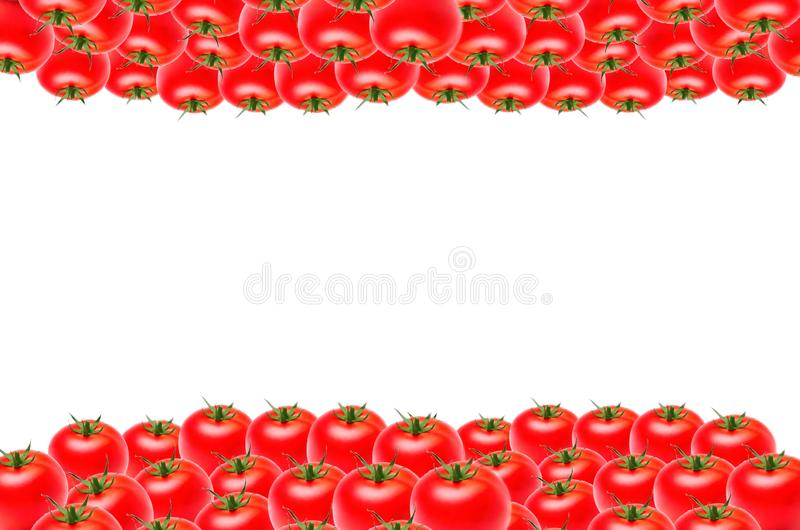 Isolate lots of tomatoes on the top and bottom on white background, copy space. Lots of tomatoes around the edges on isolated white background, square, copy vector illustration