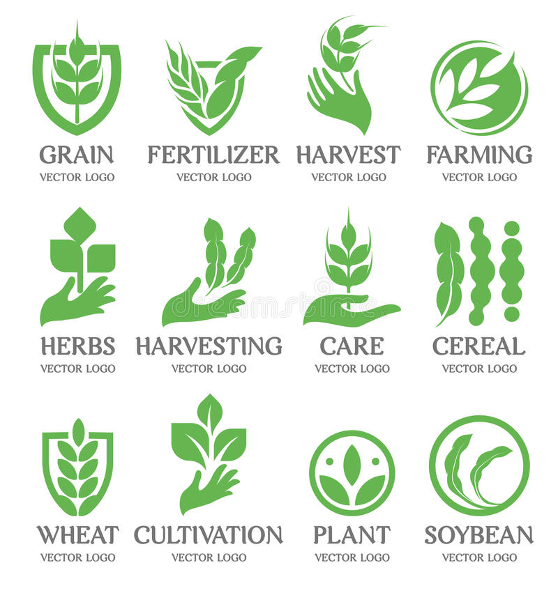 Isolated abstract green color wheat ear logo collection. Nature element logotype set. Leaf in human hand icon royalty free illustration
