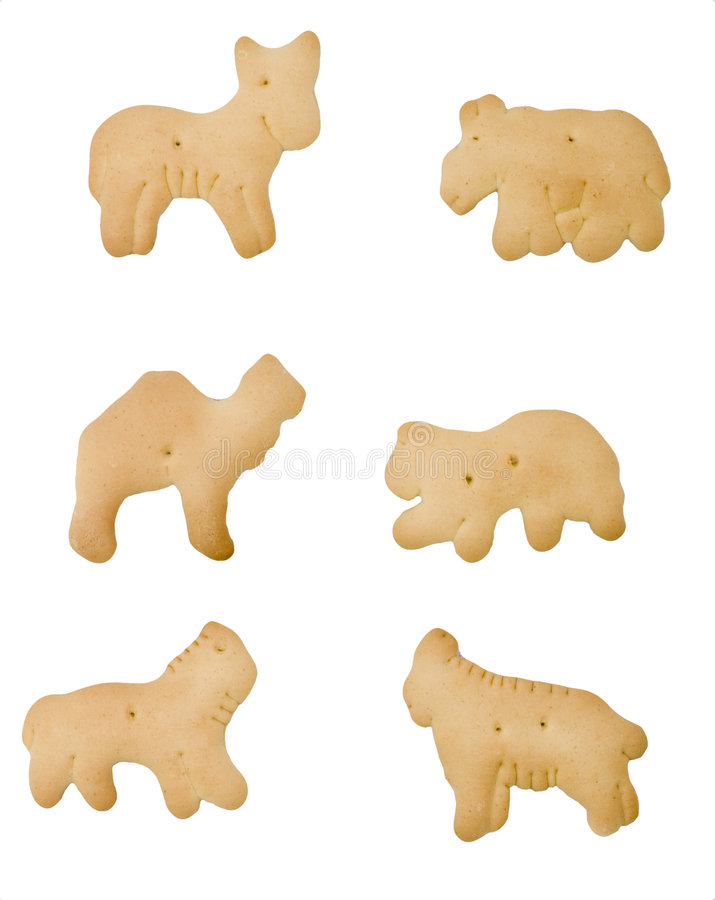 Download Isolated Animal Cracker stock image. Image of crackers - 7890089