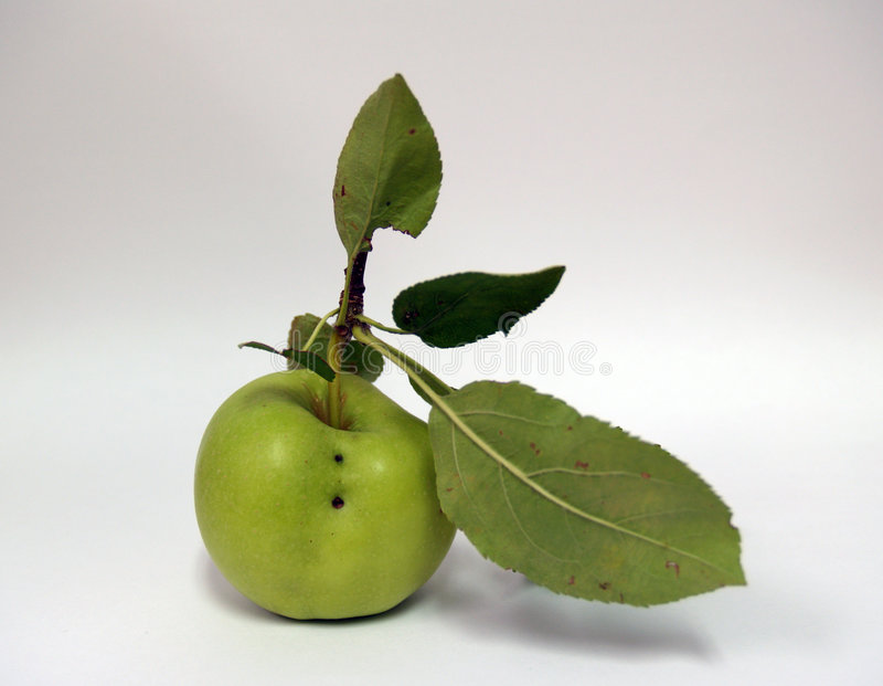 Isolated Apple stock image