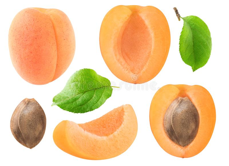 Isolated apricot pieces collection. Isolated apricots collection. Whole and cut apricot fruits, leaves and kernel isolated on white background with clipping path royalty free stock images