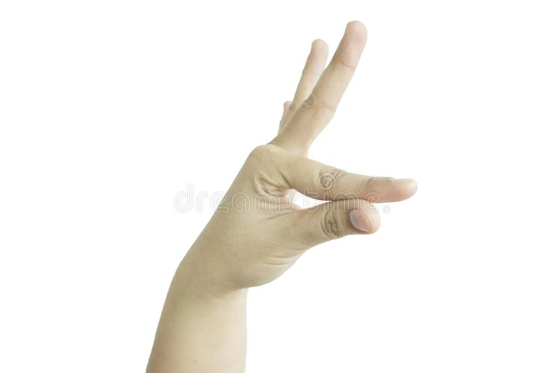 isolated background hand of caucasian man expressive animal shaped fingers. image for royalty free stock images