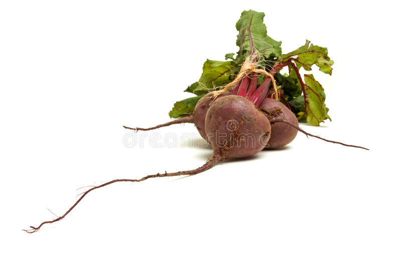 Isolated Beetroot. Freshly picked beetroot with their roots and tops isolated against white stock photo