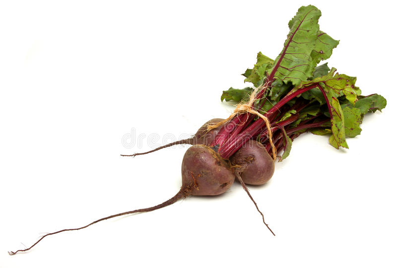 Isolated Beetroot. Freshly picked beetroot with their roots and tops isolated against white stock photography