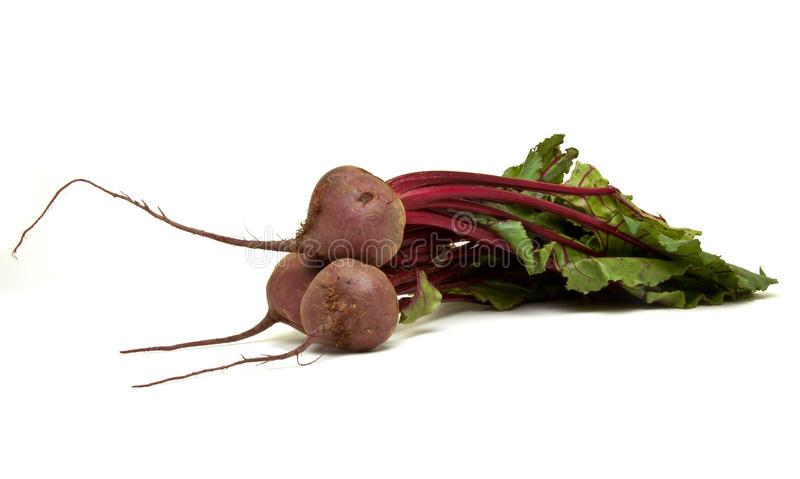 Isolated Beetroot. Freshly picked beetroot with their roots and tops isolated against white royalty free stock photography