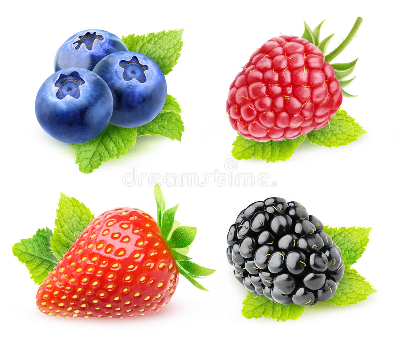 Isolated berries with mint leaf stock photo