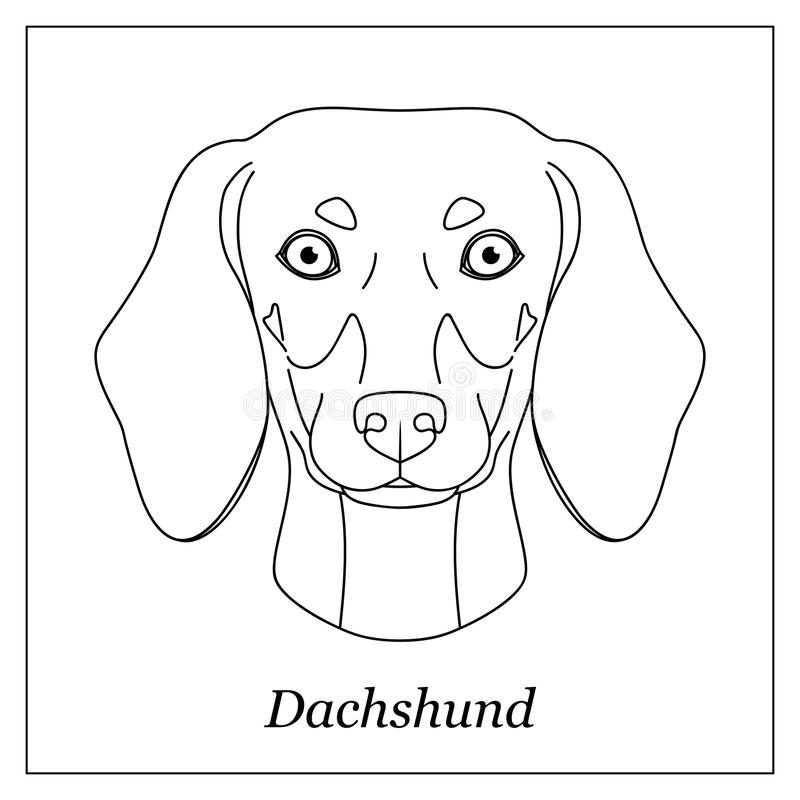 Outline Dog Dachshund Stock Illustrations