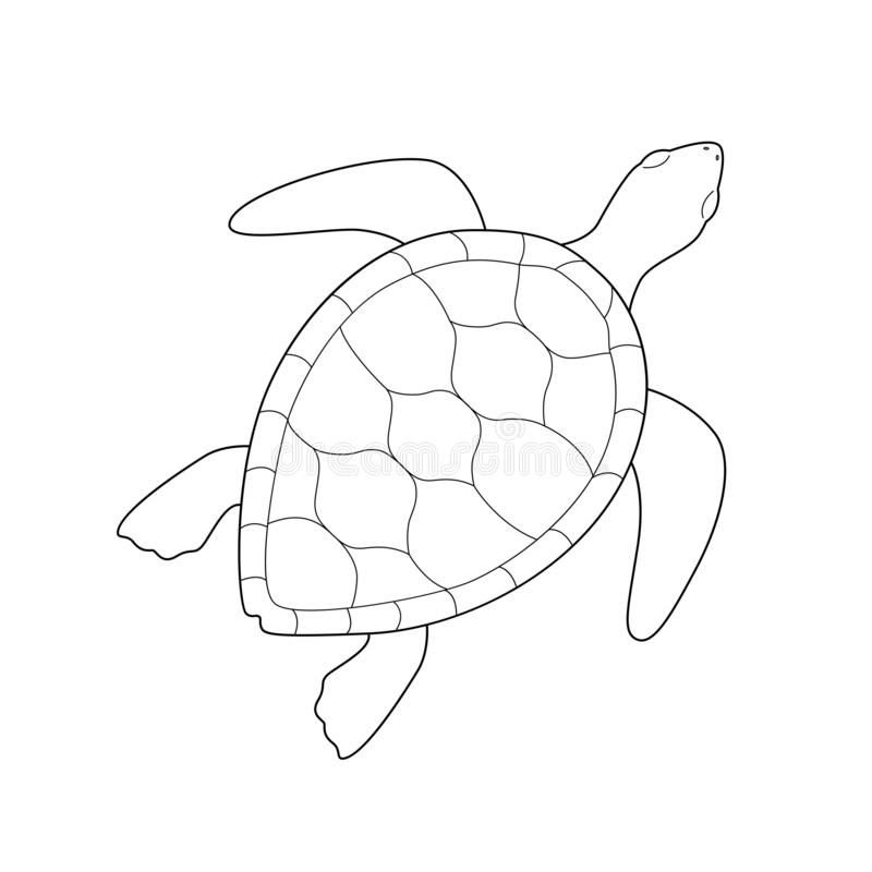 Isolated black outline monochrome sea green turtle on white background. Curve lines. Page of coloring book stock illustration