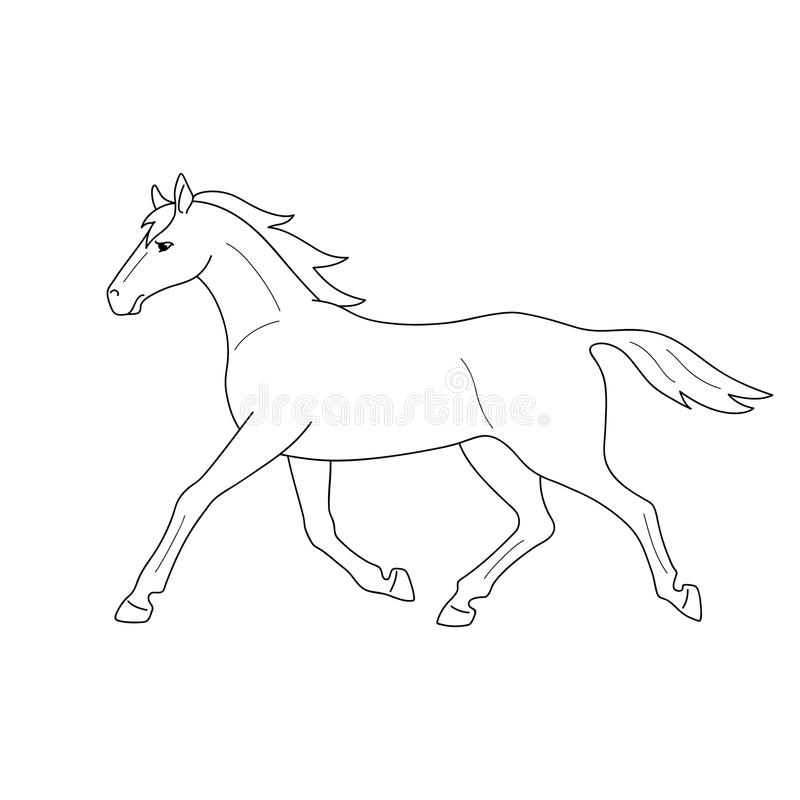Isolated black outline running, trotting horse on white background. Side view. Curve lines. Page of coloring book. vector illustration