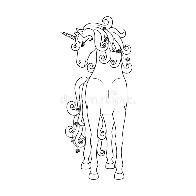 Isolated black outline standing unicorn on white background. Front view. Curve lines. Page of coloring book. Isolated black outline standing unicorn on white stock illustration