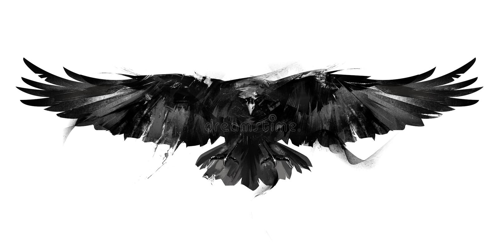 Isolated black and white illustration of a flying bird crow front royalty free stock photo