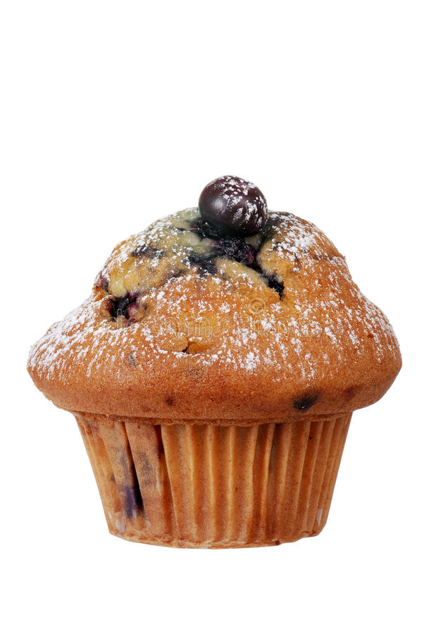 Isolated blueberry muffin with icing sugar. Closeup of an Isolated blueberry muffin with icing sugar royalty free stock images