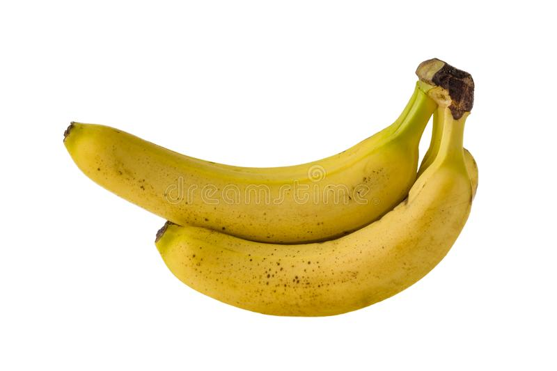 Isolated bright yellow ripe bananas on a white background royalty free stock images