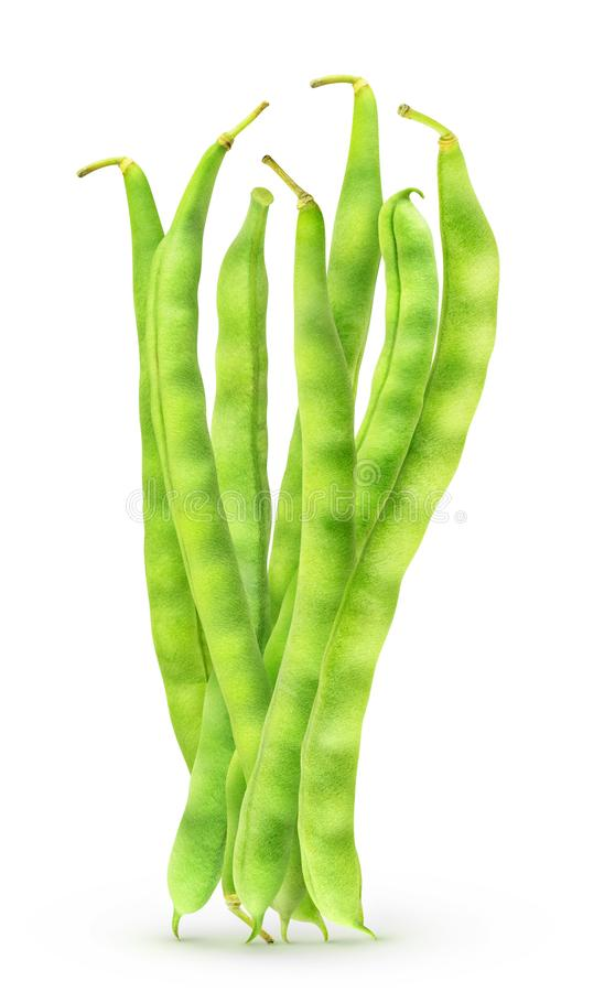 Isolated bundle of green beans royalty free stock image