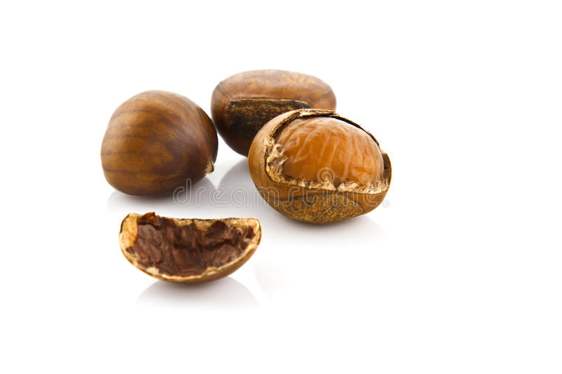 Isolated chestnut. On white background royalty free stock photos