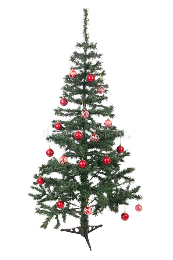 An isolated Christmas tree stock photography