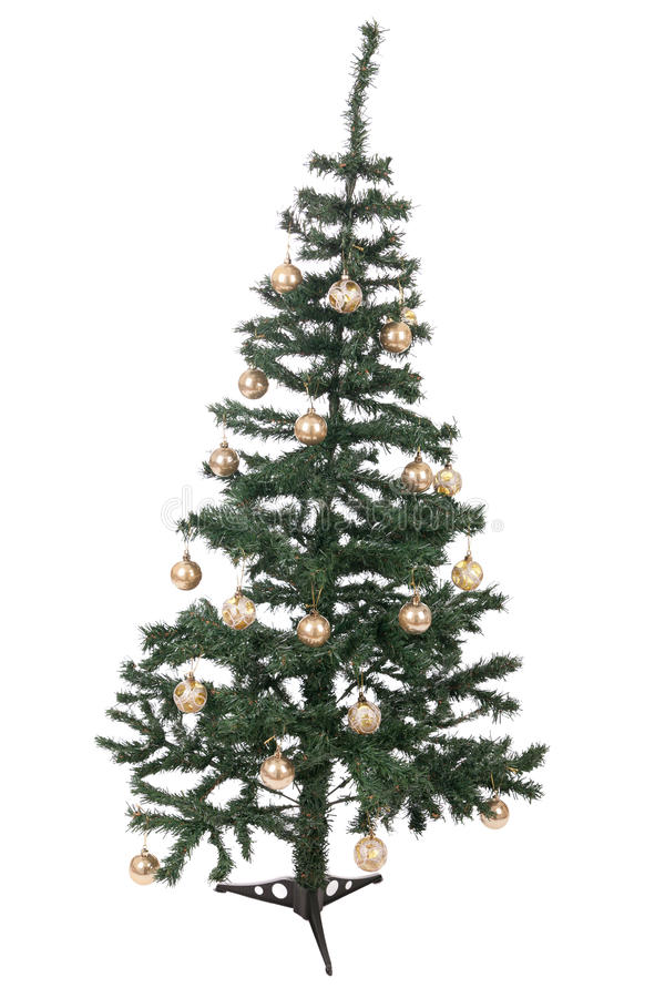 An isolated Christmas tree royalty free stock photo