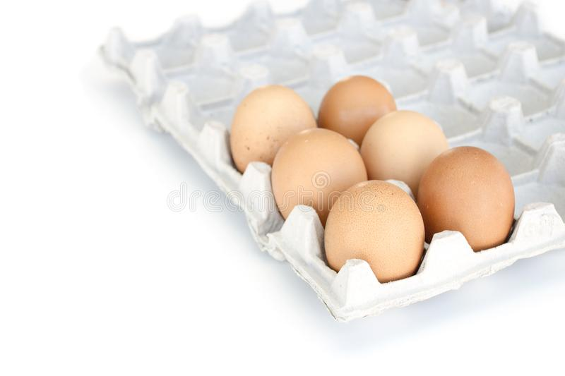 Isolated close-up six brown chicken eggs lie in a cardboard tray. Easter concept stock photo