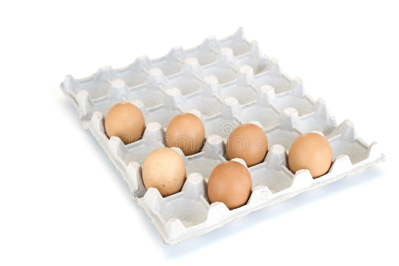 Isolated close-up of six brown chicken eggs lying in a cardboard tray on the diagonals. Easter concept royalty free stock images