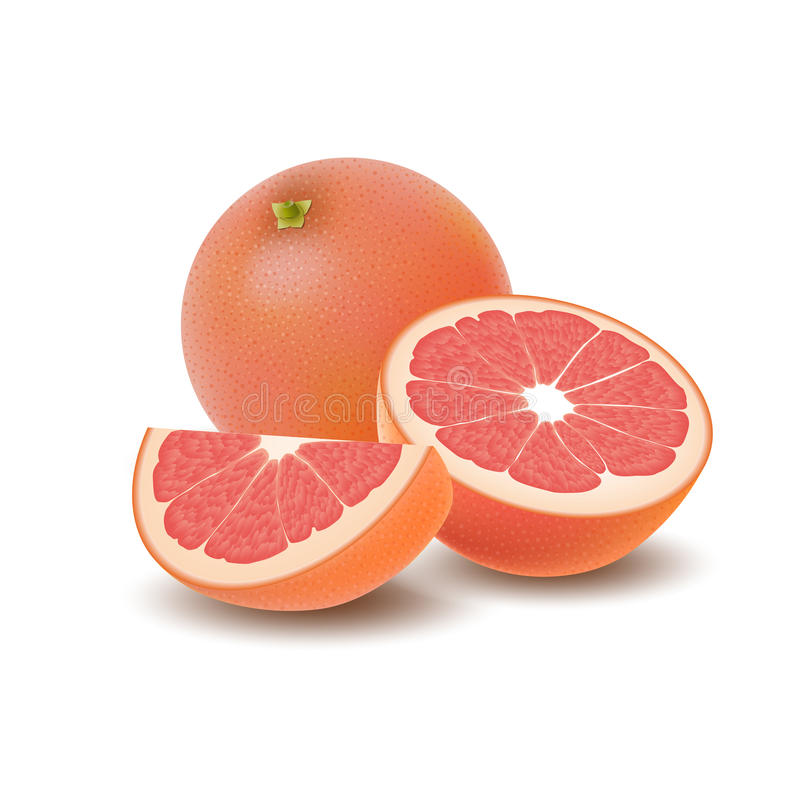 Isolated colored group of grapefruits, slice, half and whole juicy fruit with shadow on white background. Realistic citrus. vector illustration