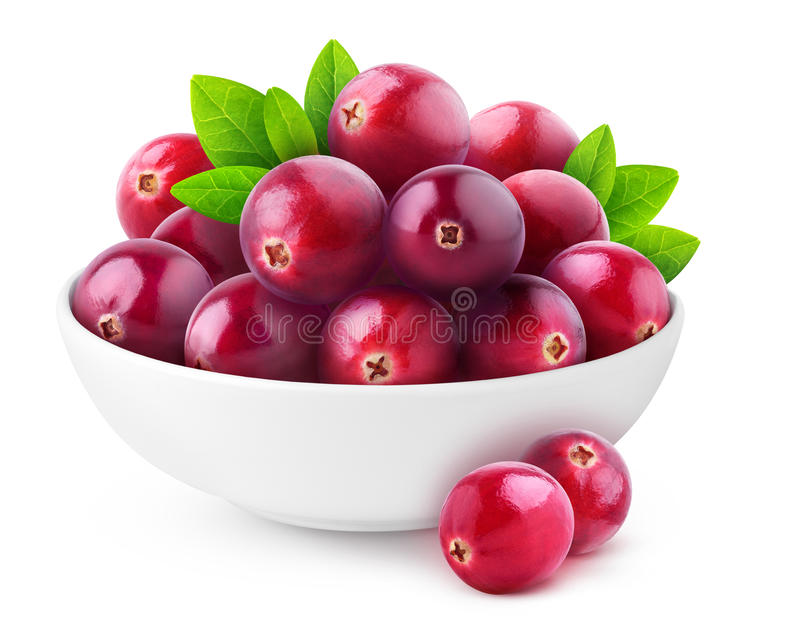 Isolated cranberries in a bowl. Isolated cranberries. White bowl with heap of fresh cranberry fruits isolated on white background with clipping path royalty free stock image