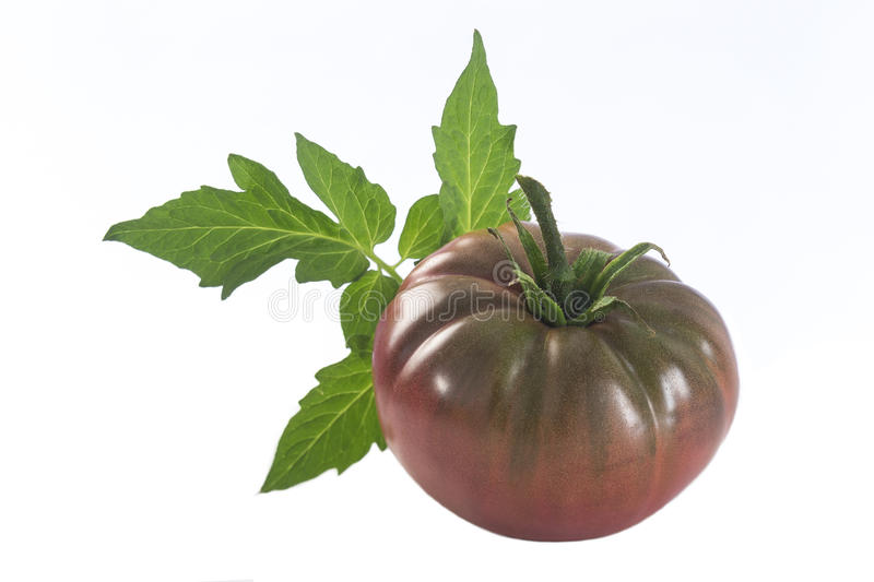 Isolated dark red heirloom tomato royalty free stock photo
