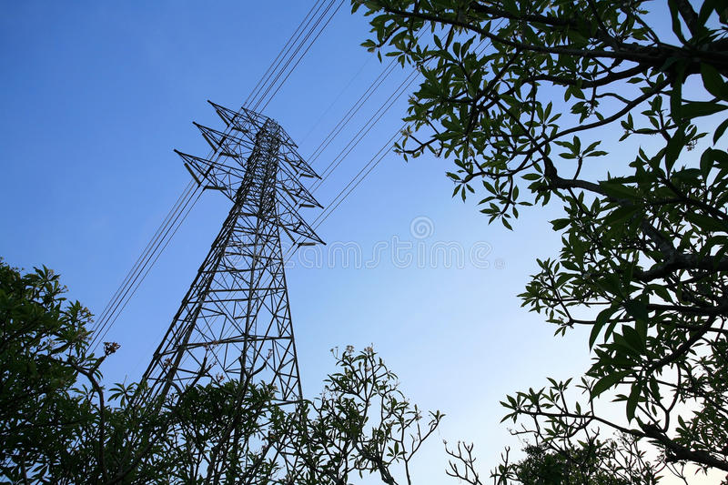 Download Isolated Elecrical Tower With Plant Environment Stock Photo - Image of frame, energy: 24749076