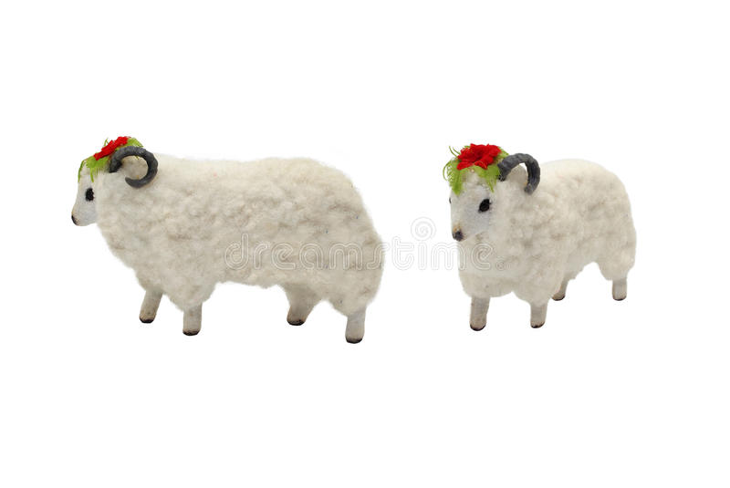 Isolated female sheep toy photo. Isolated female sheep toy side and angle view photo stock photography