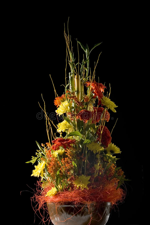 Download Isolated Flower Arrangement Stock Photo - Image: 5508058