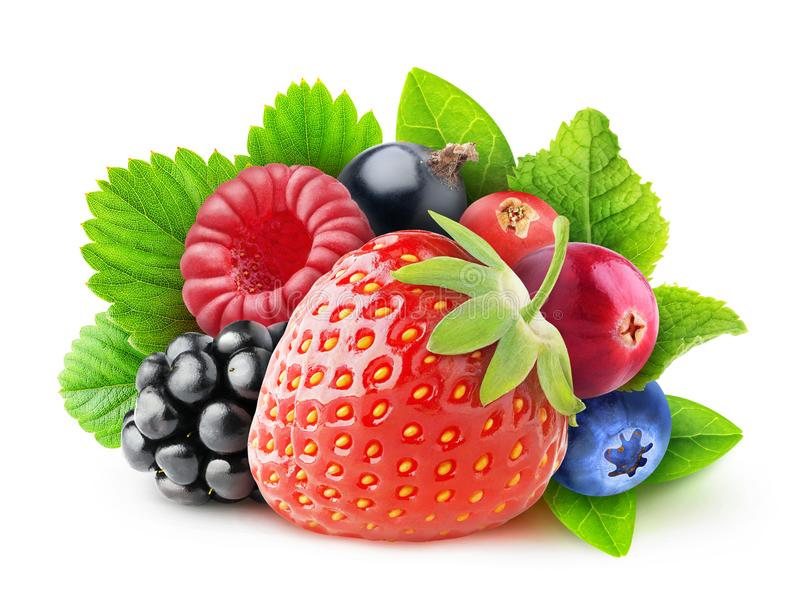 Isolated fresh berries stock images