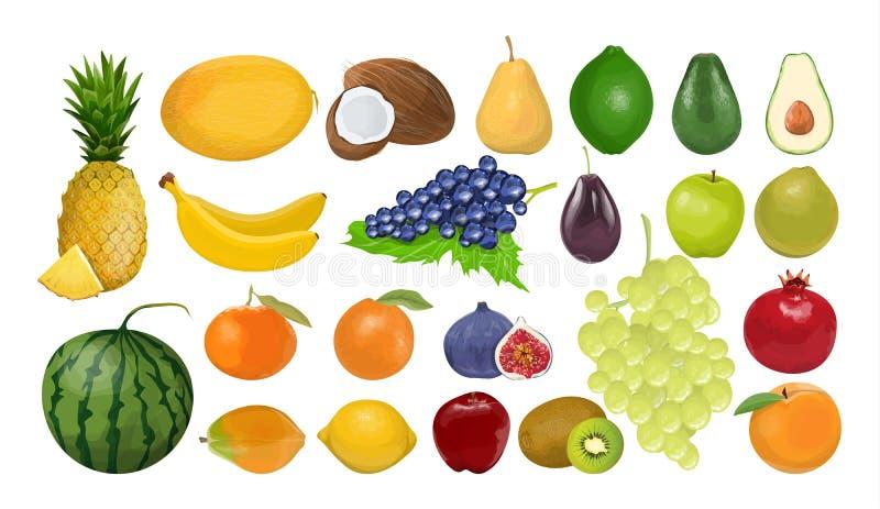 Isolated fruits set. royalty free illustration