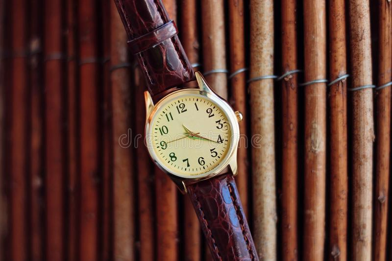 Isolated gold and quartz watch with leather strap. royalty free stock photography