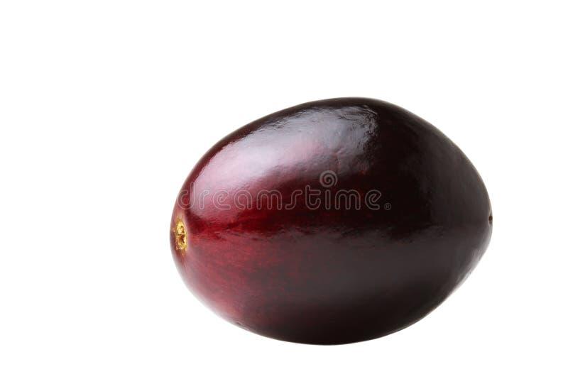 Isolated grape stock photos